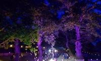 Ανάπλαση χώρου Αναψυχής Εξωραϊστικού Συλλόγου Καλεντζίου με εξωτερικό πέτρινο θέατρο. Χώρος πολλαπλών χρήσεων και εκδηλώσεων. Περιοχή Καλέντζι, Δήμος Μαραθώνα